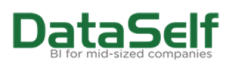 DataSelf Logo