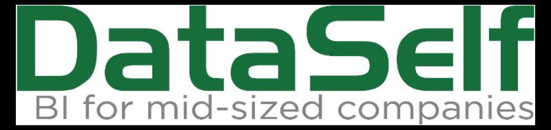 DataSelf BI